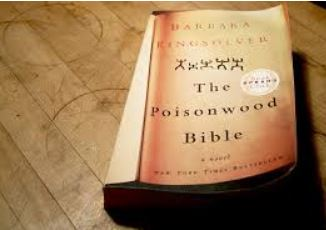 Poisonwood Bible image