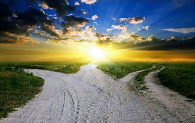 Choices_Paths
